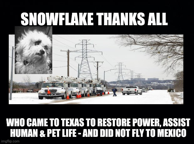 Snowflake Thanks Rescue Workers |  SNOWFLAKE THANKS ALL; WHO CAME TO TEXAS TO RESTORE POWER, ASSIST HUMAN & PET LIFE - AND DID NOT FLY TO MEXICO | image tagged in snowflake,texas,snow storm,ted cruz,thank you,rescue workers | made w/ Imgflip meme maker