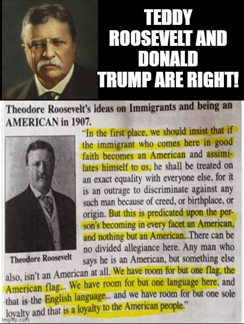 Teddy Roosevelt and Donald Trump are right! |  TEDDY ROOSEVELT AND DONALD TRUMP ARE RIGHT! | image tagged in trump,teddy roosevelt,make america great again,usa | made w/ Imgflip meme maker
