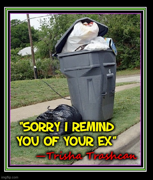 "These Little Things Remind Me of You |  ""SORRY I REMIND YOU OF YOUR EX""; —Trisha Trashcan 