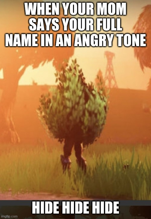 Fortnite bush |  WHEN YOUR MOM SAYS YOUR FULL NAME IN AN ANGRY TONE; HIDE HIDE HIDE | image tagged in fortnite bush | made w/ Imgflip meme maker
