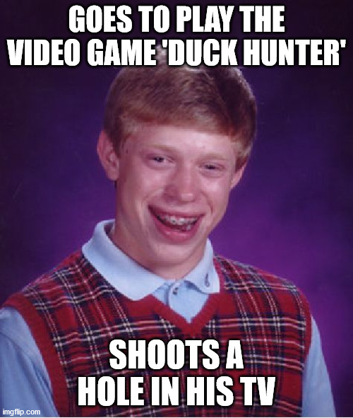 The one time he actually doesn't miss a shot.... |  GOES TO PLAY THE VIDEO GAME 'DUCK HUNTER'; SHOOTS A HOLE IN HIS TV | image tagged in memes,bad luck brian,nintendo,duck,hunter,tv | made w/ Imgflip meme maker