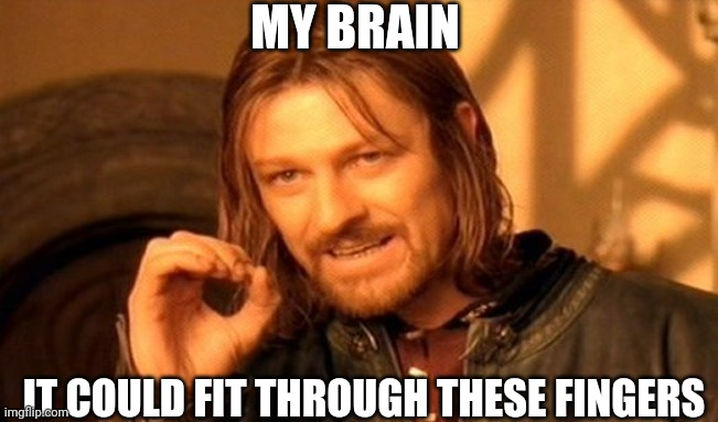 My brain |  MY BRAIN; IT COULD FIT THROUGH THESE FINGERS | image tagged in memes,one does not simply,brain,insult,idiocy | made w/ Imgflip meme maker
