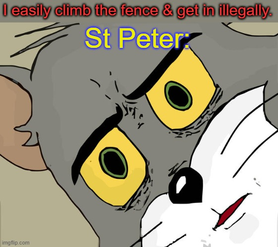 Death hack |  I easily climb the fence & get in illegally. St Peter: | image tagged in memes,unsettled tom,heaven,life hack,eternity,fence aka border wall | made w/ Imgflip meme maker