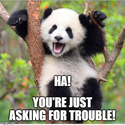 HA! YOU'RE JUST ASKING FOR TROUBLE! | made w/ Imgflip meme maker