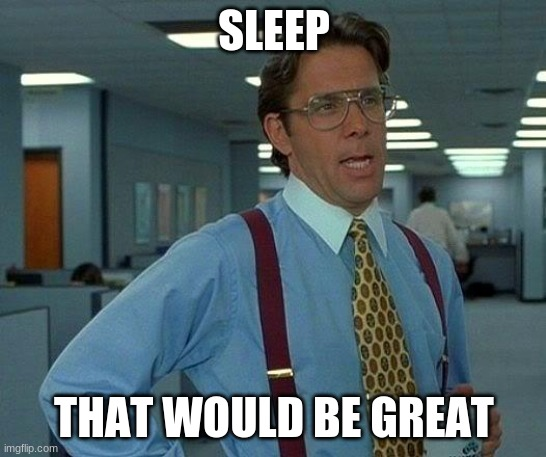 But I don't wanna sleep |  SLEEP; THAT WOULD BE GREAT | image tagged in memes,that would be great | made w/ Imgflip meme maker
