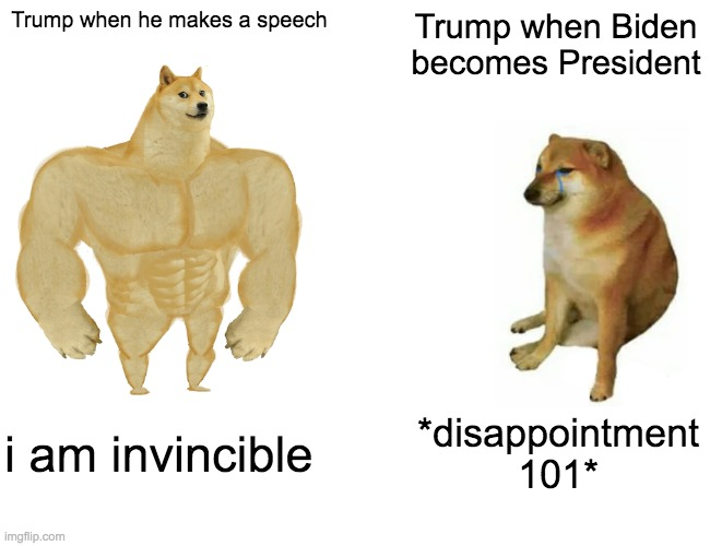 Buff Doge vs. Cheems |  Trump when he makes a speech; Trump when Biden becomes President; i am invincible; *disappointment 101* | image tagged in memes,buff doge vs cheems | made w/ Imgflip meme maker
