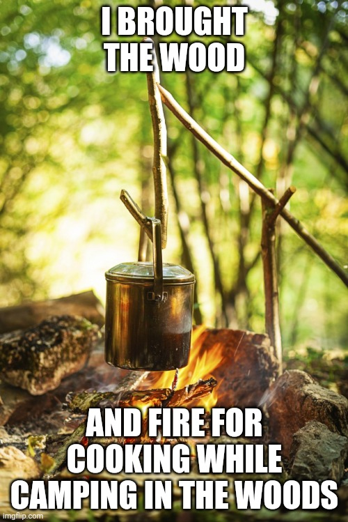 Wood and camp fire |  I BROUGHT THE WOOD; AND FIRE FOR COOKING WHILE CAMPING IN THE WOODS | image tagged in camping,woods,fire,comments,comment section,memes | made w/ Imgflip meme maker