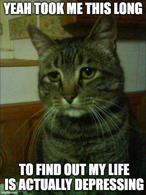 Depressed Cat |  YEAH TOOK ME THIS LONG; TO FIND OUT MY LIFE IS ACTUALLY DEPRESSING | image tagged in memes,depressed cat | made w/ Imgflip meme maker