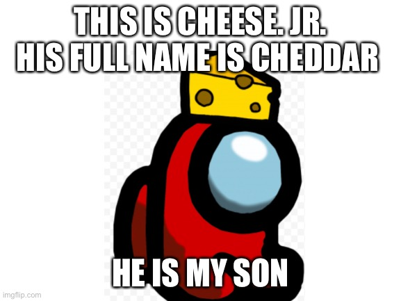 Cheese jr |  THIS IS CHEESE. JR. HIS FULL NAME IS CHEDDAR; HE IS MY SON | image tagged in blank white template | made w/ Imgflip meme maker