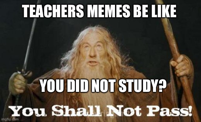 gandalf you shall not pass |  TEACHERS MEMES BE LIKE; YOU DID NOT STUDY? | image tagged in gandalf you shall not pass | made w/ Imgflip meme maker