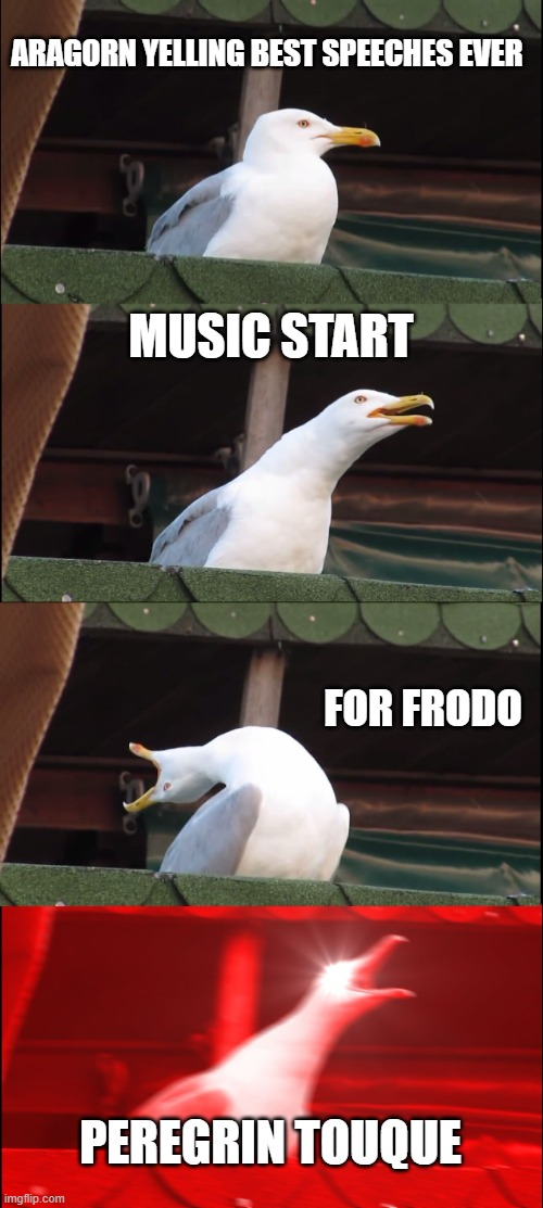 for frodo |  ARAGORN YELLING BEST SPEECHES EVER; MUSIC START; FOR FRODO; PEREGRIN TOUQUE | image tagged in memes,inhaling seagull,lord of the rings | made w/ Imgflip meme maker