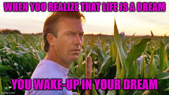 field of dreams |  WHEN YOU REALIZE THAT LIFE IS A DREAM; YOU WAKE-UP IN YOUR DREAM | image tagged in field of dreams | made w/ Imgflip meme maker