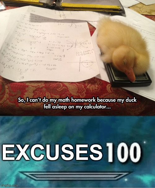 LOL | image tagged in 100,excuses,funny,school,ducks,kids | made w/ Imgflip meme maker