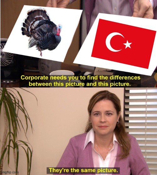 Turk | image tagged in turkey,turkish,they are the same picture | made w/ Imgflip meme maker