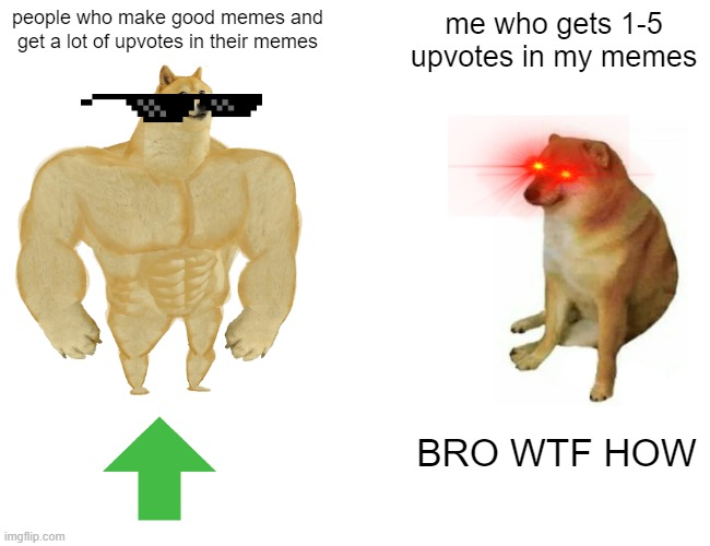 Buff Doge vs. Cheems Meme |  people who make good memes and get a lot of upvotes in their memes; me who gets 1-5 upvotes in my memes; BRO WTF HOW | image tagged in memes,buff doge vs cheems | made w/ Imgflip meme maker