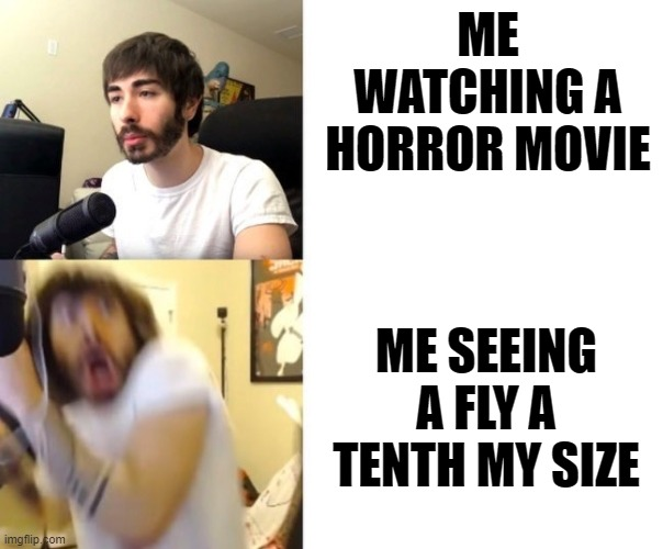Scumbag house flies |  ME WATCHING A HORROR MOVIE; ME SEEING A FLY A TENTH MY SIZE | image tagged in penguinz0,scumbag house fly | made w/ Imgflip meme maker