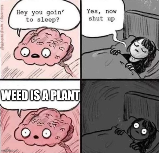 HOLD UP. WHY IS A PLANT ILLEGAL |  WEED IS A PLANT | image tagged in waking up brain | made w/ Imgflip meme maker