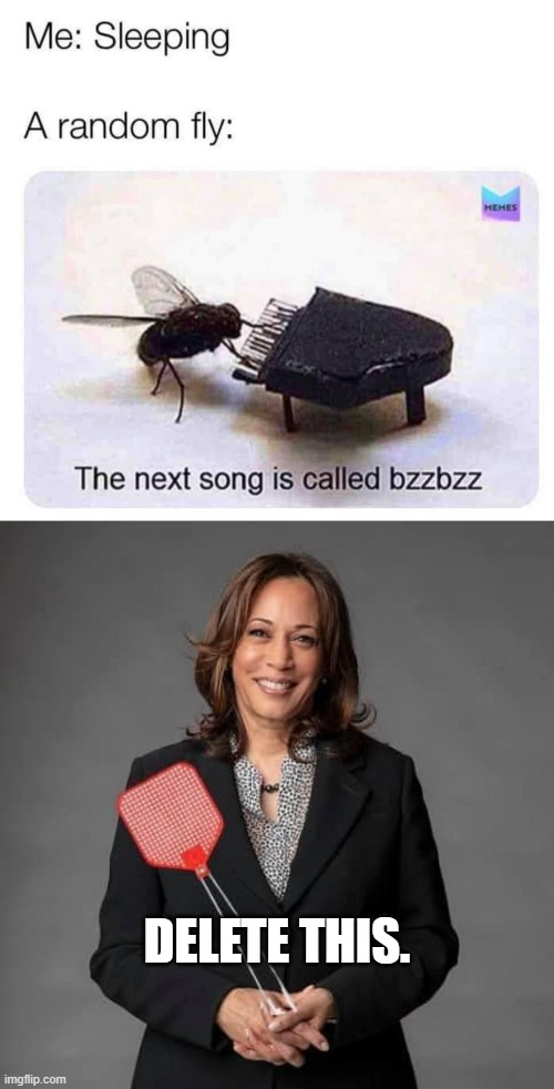 DELETE THIS. | image tagged in the next song is called bzzbzz,kamala harris flyswatter | made w/ Imgflip meme maker