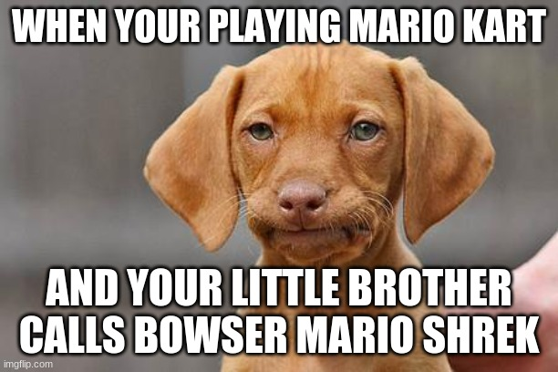 Dissapointed puppy |  WHEN YOUR PLAYING MARIO KART; AND YOUR LITTLE BROTHER CALLS BOWSER MARIO SHREK | image tagged in dissapointed puppy | made w/ Imgflip meme maker