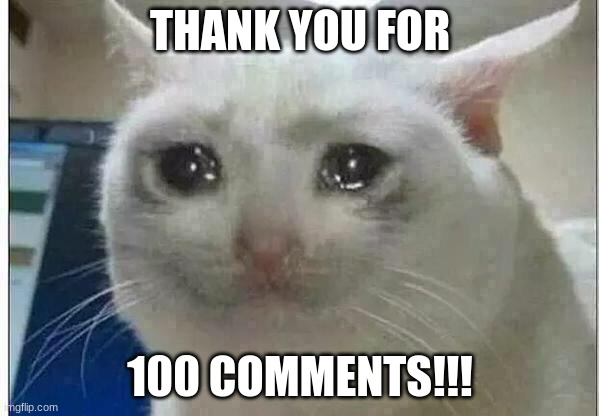 crying cat |  THANK YOU FOR; 100 COMMENTS!!! | image tagged in crying cat,100,thank you | made w/ Imgflip meme maker