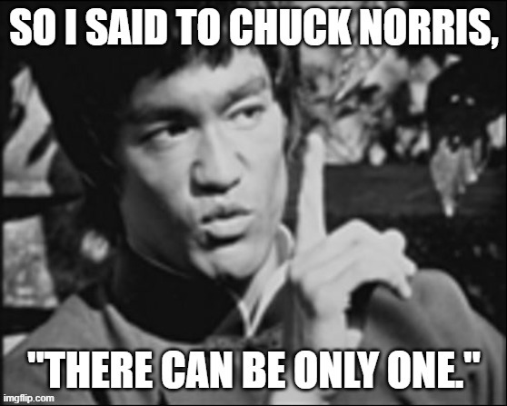 "If the story of ""Enter the Dragon"" and ""Highlander"" crossed paths..... 
