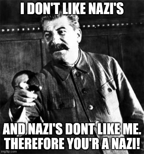 Stalin    I DON'T LIKE NAZI'S; AND NAZI'S DONT LIKE ME.<br /> THEREFORE YOU'R A NAZI!   image tagged in stalin   made w/ Imgflip meme maker