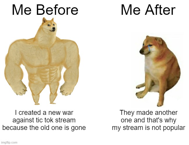 Buff Doge vs. Cheems |  Me Before; Me After; I created a new war against tic tok stream because the old one is gone; They made another one and that's why my stream is not popular | image tagged in memes,buff doge vs cheems | made w/ Imgflip meme maker