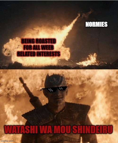your attack is ineffective | image tagged in game of thrones,weeb | made w/ Imgflip meme maker