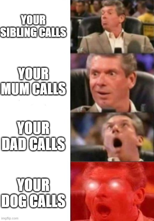 Mr. McMahon reaction |  YOUR SIBLING CALLS; YOUR MUM CALLS; YOUR DAD CALLS; YOUR DOG CALLS | image tagged in mr mcmahon reaction | made w/ Imgflip meme maker