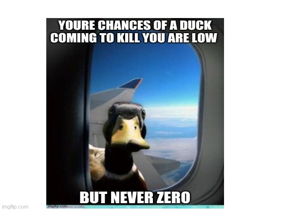 image tagged in memes,duck,funny,funny memes,low but never zero,if u see this comment for 10 free upvotes | made w/ Imgflip meme maker