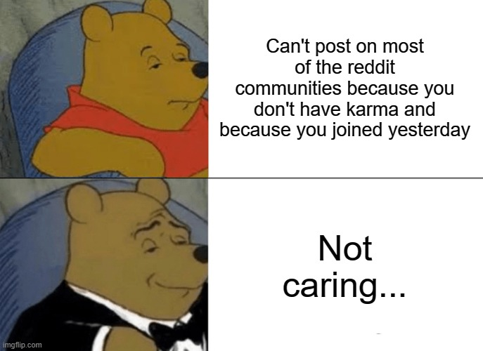 Tuxedo Winnie The Pooh |  Can't post on most of the reddit communities because you don't have karma and because you joined yesterday; Not caring... | image tagged in memes,reddit,damn,hahahaha | made w/ Imgflip meme maker
