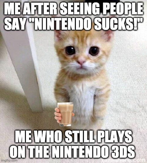 "Cute Cat Meme |  ME AFTER SEEING PEOPLE SAY ""NINTENDO SUCKS!""; ME WHO STILL PLAYS ON THE NINTENDO 3DS 