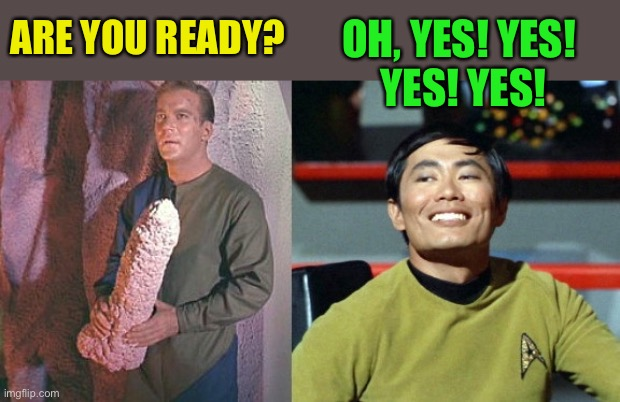 Kirk and Sulu | ARE YOU READY? OH, YES! YES!  YES! YES! | image tagged in kirk and sulu | made w/ Imgflip meme maker