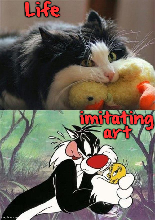Life; imitating art | image tagged in cats | made w/ Imgflip meme maker