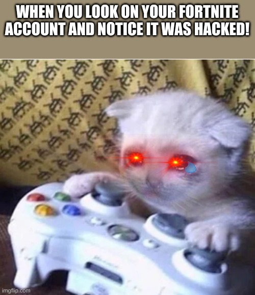 Sad gaming cat |  WHEN YOU LOOK ON YOUR FORTNITE ACCOUNT AND NOTICE IT WAS HACKED! | image tagged in sad gaming cat,cats,gaming cat,fortnite cat | made w/ Imgflip meme maker