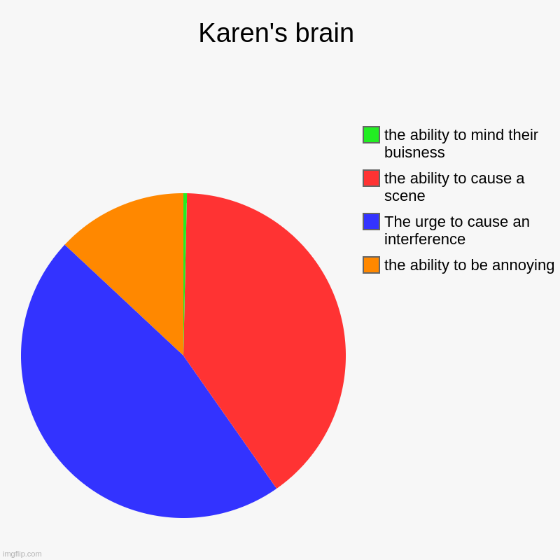 KARENS 2020 | Karen's brain | the ability to be annoying, The urge to cause an interference, the ability to cause a scene, the ability to mind their buisn | image tagged in charts,pie charts | made w/ Imgflip chart maker