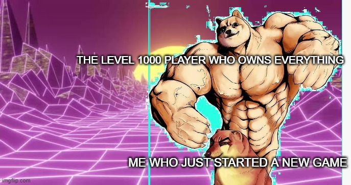 me starting a new game |  THE LEVEL 1000 PLAYER WHO OWNS EVERYTHING; ME WHO JUST STARTED A NEW GAME | image tagged in memes | made w/ Imgflip meme maker