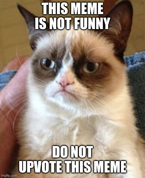 Grumpy Cat |  THIS MEME IS NOT FUNNY; DO NOT UPVOTE THIS MEME | image tagged in memes,grumpy cat | made w/ Imgflip meme maker
