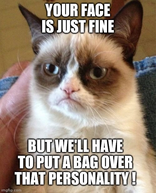 Grumpy Cat |  YOUR FACE IS JUST FINE; BUT WE'LL HAVE TO PUT A BAG OVER THAT PERSONALITY ! | image tagged in memes,grumpy cat | made w/ Imgflip meme maker
