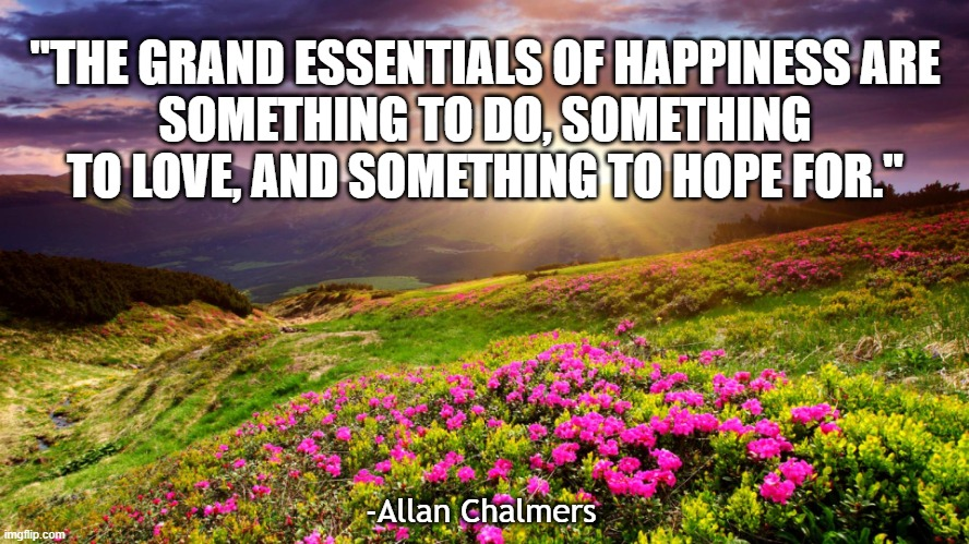 """The Grand essentials of happiness are: something to do, something to love, and something to hope for."" 