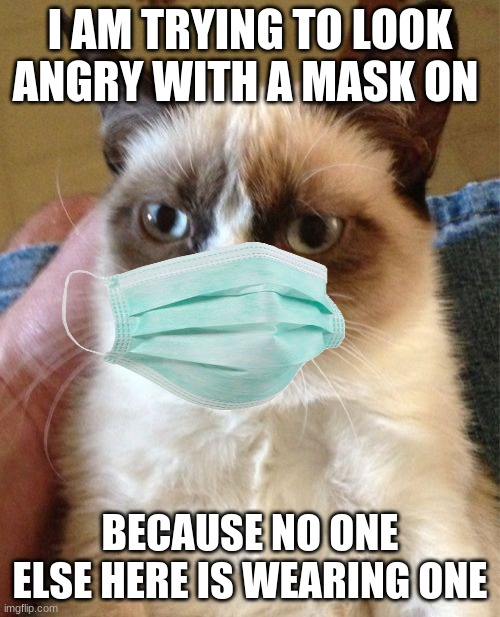 Grumpy Cat |  I AM TRYING TO LOOK ANGRY WITH A MASK ON; BECAUSE NO ONE ELSE HERE IS WEARING ONE | image tagged in memes,grumpy cat | made w/ Imgflip meme maker
