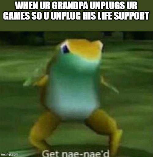 Get nae-nae'd |  WHEN UR GRANDPA UNPLUGS UR GAMES SO U UNPLUG HIS LIFE SUPPORT | image tagged in get nae-nae'd | made w/ Imgflip meme maker