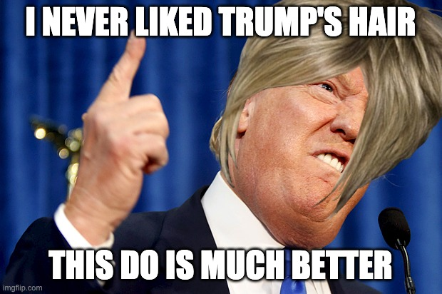 Donald Trump |  I NEVER LIKED TRUMP'S HAIR; THIS DO IS MUCH BETTER | image tagged in donald trump,karen | made w/ Imgflip meme maker