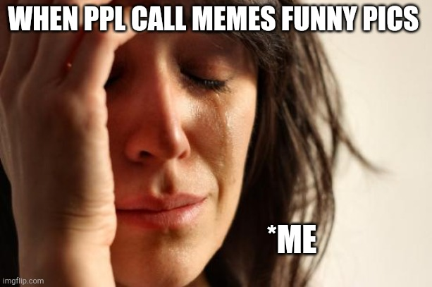 Why just y? |  WHEN PPL CALL MEMES FUNNY PICS; *ME | image tagged in memes,first world problems | made w/ Imgflip meme maker