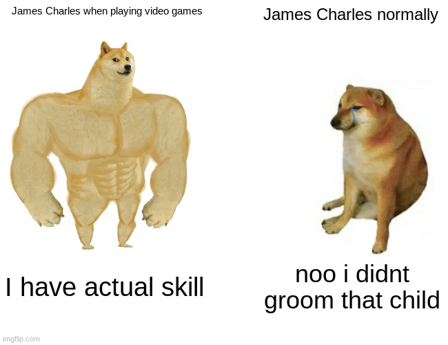 James Choorls |  James Charles when playing video games; James Charles normally; I have actual skill; noo i didnt groom that child | image tagged in memes,buff doge vs cheems,james charles,funny | made w/ Imgflip meme maker