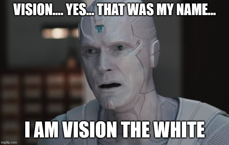 White Vision |  VISION.... YES... THAT WAS MY NAME... I AM VISION THE WHITE | image tagged in vision,wandavision,lord of the rings,gandalf | made w/ Imgflip meme maker