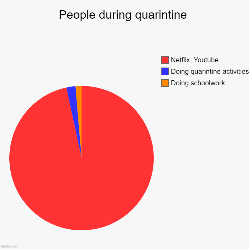 Yes | People during quarintine | Doing schoolwork, Doing quarintine activities, Netflix, Youtube | image tagged in charts,pie charts | made w/ Imgflip chart maker