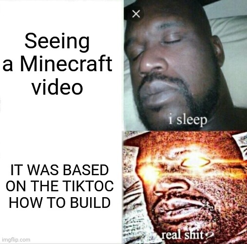 Sleeping Shaq |  Seeing a Minecraft video; IT WAS BASED ON THE TIKTOC HOW TO BUILD | image tagged in memes,sleeping shaq | made w/ Imgflip meme maker