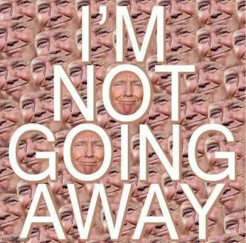 Donald Trump Is Not Going Away | image tagged in libtards,fear,donald trump | made w/ Imgflip meme maker