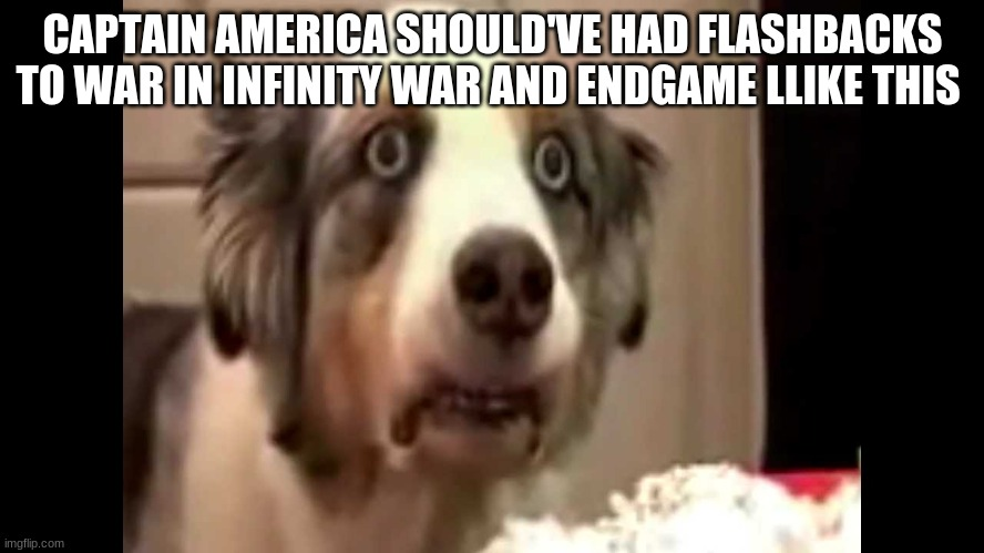 Obviously i am kidding |  CAPTAIN AMERICA SHOULD'VE HAD FLASHBACKS TO WAR IN INFINITY WAR AND ENDGAME LLIKE THIS | image tagged in vietnam flashback dog | made w/ Imgflip meme maker